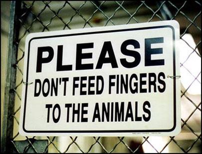 borden-geen-vingers-aan-dieren-voeren