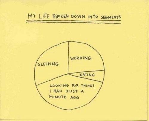 cartoon-life-in-segments